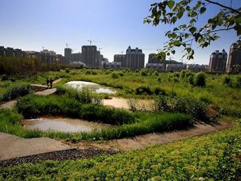 蒙阴东汶河生态湿地